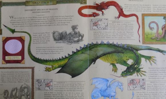 sample page dragonology