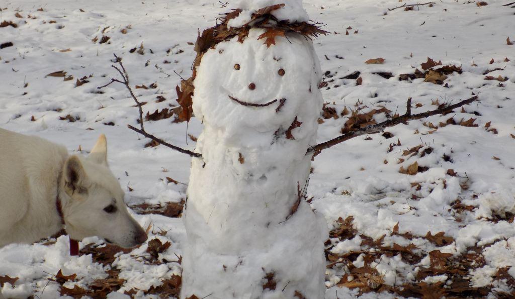 snowman and Freki