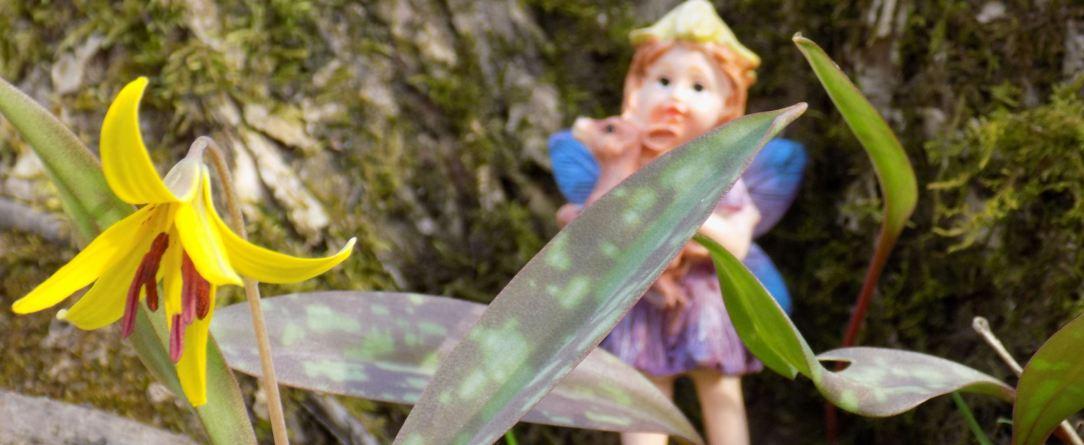 Fairy featured.jpg