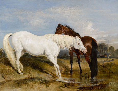 Portrait_of_an_Arab_Mare_with_her_Foal_by_Sir_Edwin_Henry_Landseer